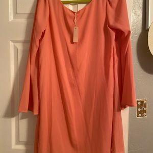 Pink Blush  chiffon Dress